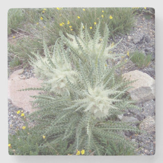 Frosty Ball Alpine Wildflowers Stone Coaster