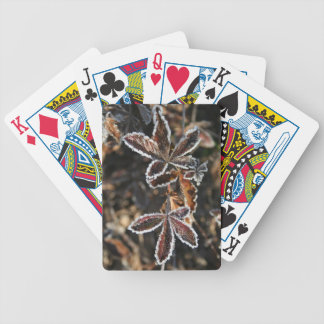 Frosty Fauna Bicycle Playing Cards