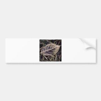 frosty leaf car bumper sticker