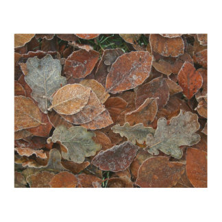 Frosty leaves wood canvas