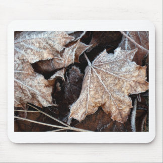 Frosty Maple Leaves, photograph Mouse Pad