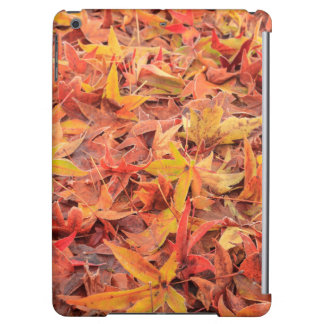 Frosty morning, Mill Creek, WA, USA iPad Air Cases