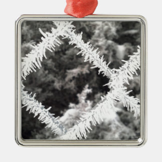 Frosty Photo Metal Ornament