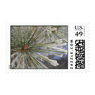 Frosty pine cone tree postage stamps