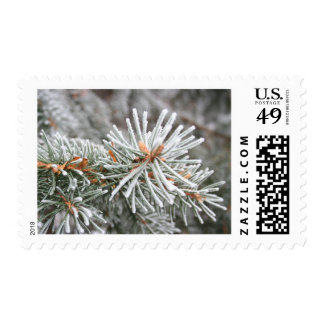 Frosty Pines Postage Stamps