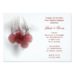 Frosty Red Berries Winter Post Wedding Brunch 5x7 Paper Invitation Card