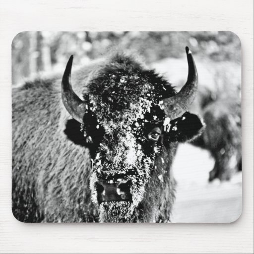 Frosty Yellowstone Bison Mousepads