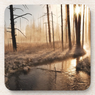 Frosty Yellowstone Morning Drink Coaster