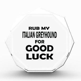 Frote mi galgo italiano para la buena suerte