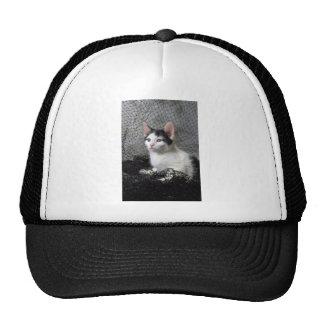 Frou Frou 2 Trucker Hat
