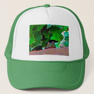 Frowning Frog Trucker Hat