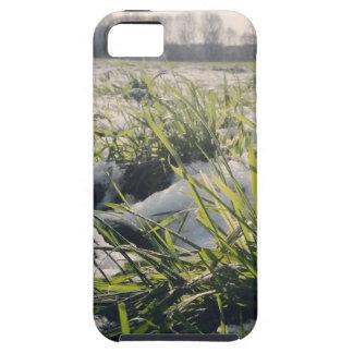Frozen 1 iPhone 5 cases
