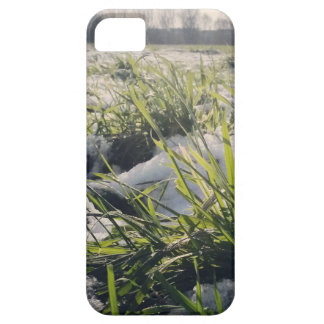 Frozen 1 iPhone 5 case