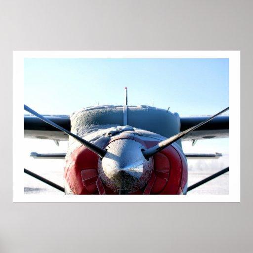 Frozen Airplane Print