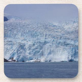 Frozen Beauty Drink Coaster