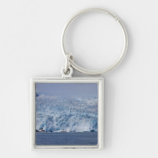 Frozen Beauty Keychain