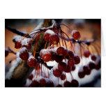 Frozen Berries Card