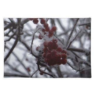 Frozen Berries Placemat