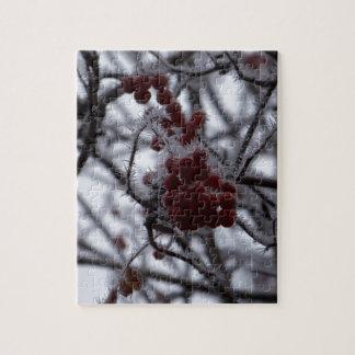 Frozen Berries Jigsaw Puzzles