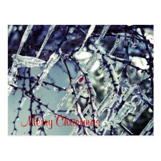 Frozen Berry Christmas Postcard