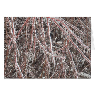 Frozen Branches Card