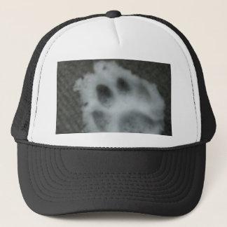 Frozen Cat's Paw Trucker Hat