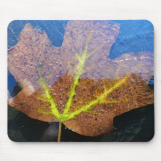 Frozen Fall Maple Leaf Late Autumn Nature Mouse Pad