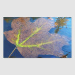Frozen Fall Maple Leaf Late Autumn Nature Rectangular Sticker