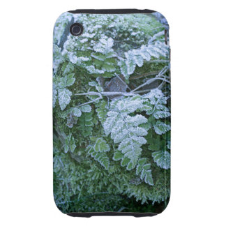 Frozen Fern iPhone 3G/3GS Case Mate Tough