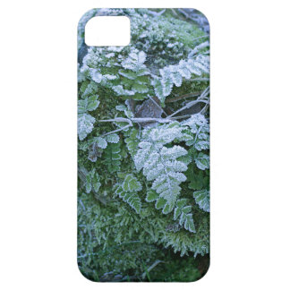 Frozen Fern iPhone 5 Case-Mate Barely There iPhone SE/5/5s Case