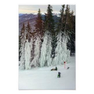 Frozen firs photo print