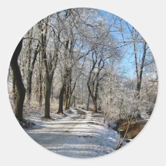 frozen forest trail classic round sticker