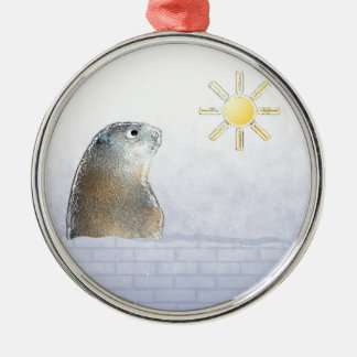 Frozen Groundhog Round Metal Christmas Ornament