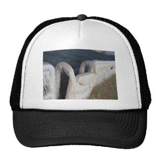 Frozen in Time Trucker Hat