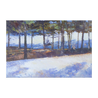 Frozen Lake New York State Canvas Print