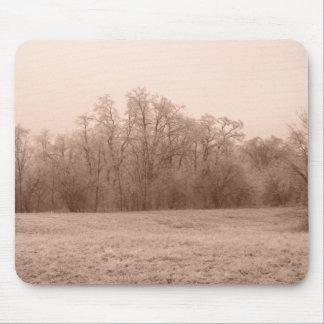 Frozen landscape mouse pad