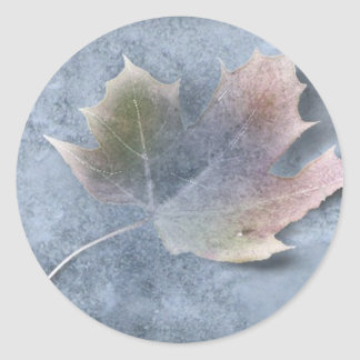 Frozen Leaf on Ice Classic Round Sticker