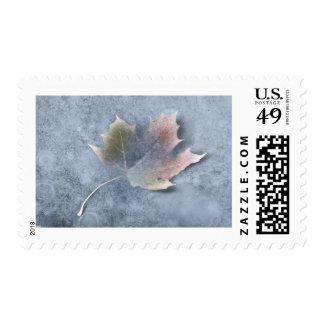frozen leaf stamps