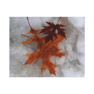 Frozen Leaves Canvas Print