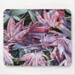 Frozen Leaves Mouse Pad