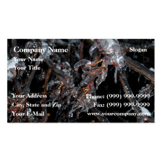 Frozen nature business cards