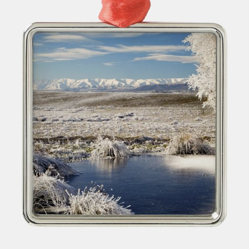 Frozen Pond and Hoar Frost on Willow Tree, near Christmas Ornament