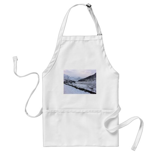 frozen river adult apron
