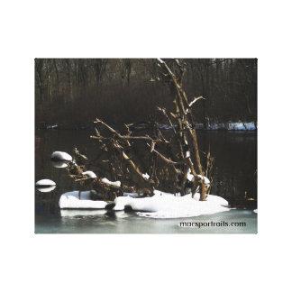 Frozen Roots Canvas Print