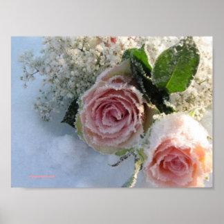 Frozen roses poster