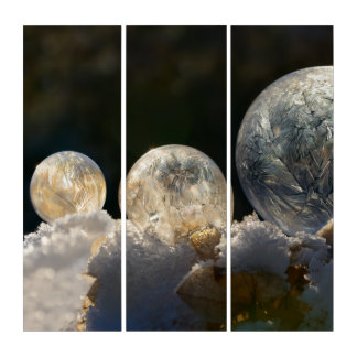 Frozen Soap Bubbles Ice Crystal Winter Photography Triptych