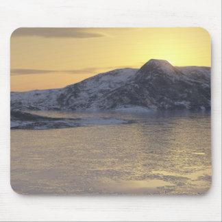 frozen strait mouse pad