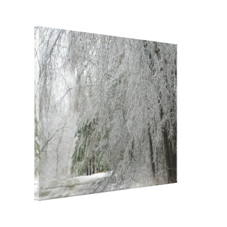 Frozen Street Canvas Print
