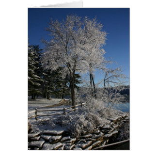 Frozen Tree Card
