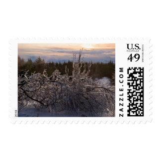 Frozen tree sculpture postage stamps